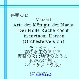 mozart_derhollerache260.jpg