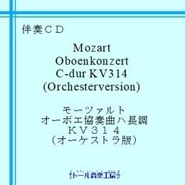 mozart_ob_konzert_orchester260.jpg